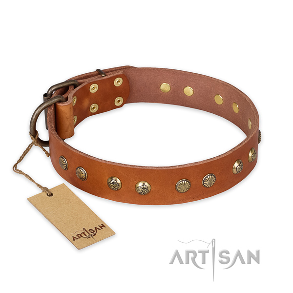 Extraordinary natural genuine leather dog collar with strong fittings