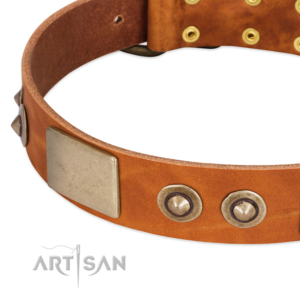 Corrosion proof traditional buckle on full grain leather dog collar for your dog