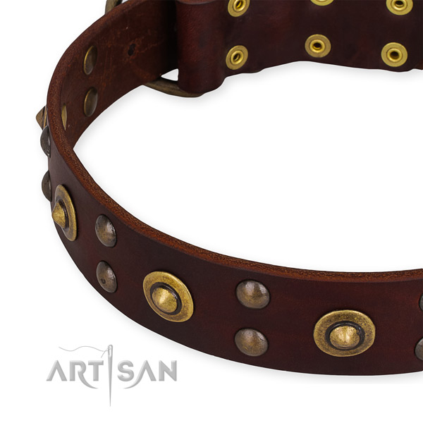 Full grain natural leather collar with rust-proof D-ring for your attractive dog