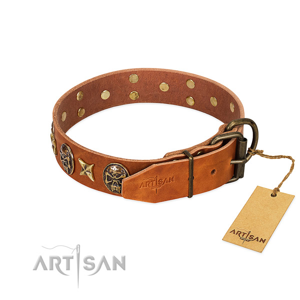 Full grain leather dog collar with strong hardware and adornments
