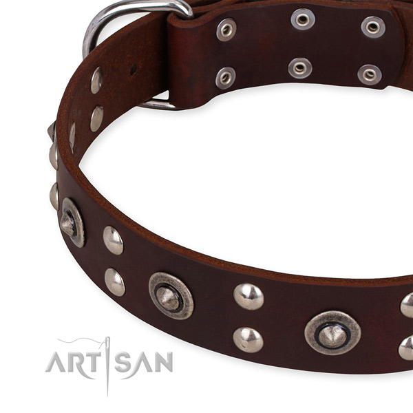 Full grain leather collar with rust-proof fittings for your handsome pet