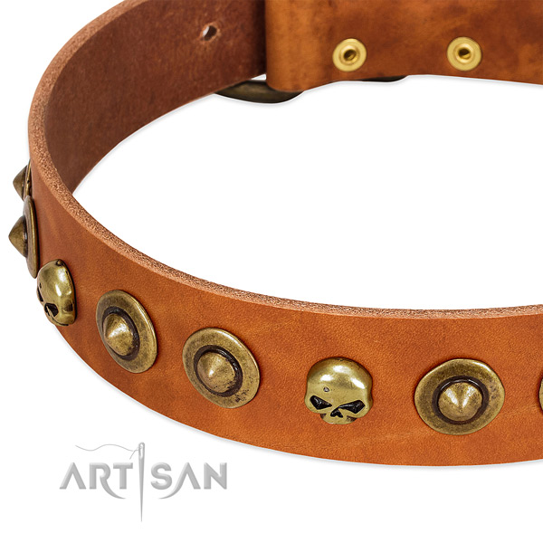 Exceptional decorations on full grain leather collar for your doggie