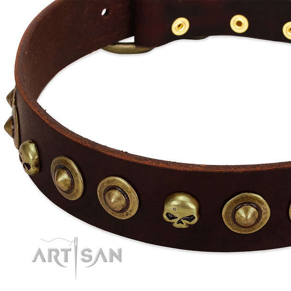 Awesome embellishments on full grain genuine leather collar for your pet