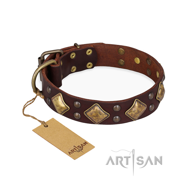 Walking unique dog collar with rust-proof buckle