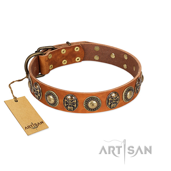 Easy wearing full grain leather dog collar for basic training your dog