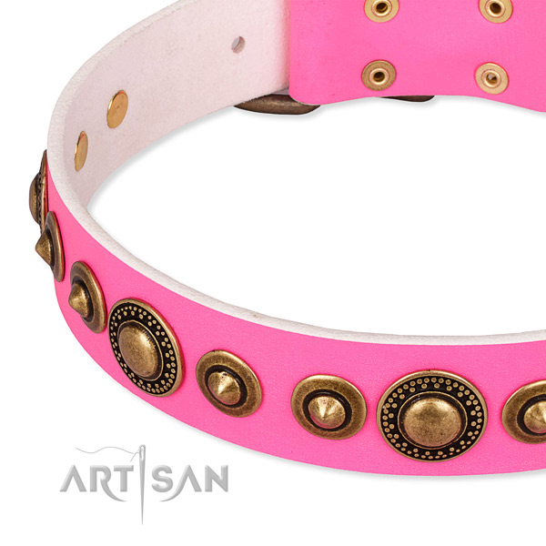 High quality full grain leather dog collar made for your impressive doggie
