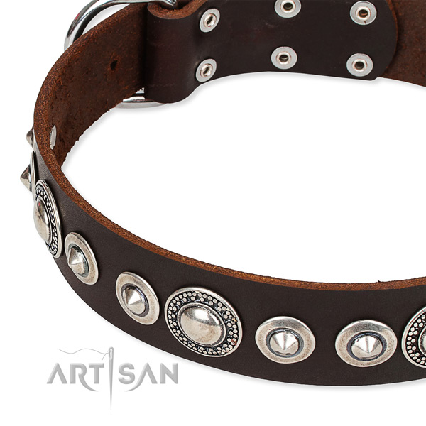 Daily use adorned dog collar of fine quality full grain natural leather