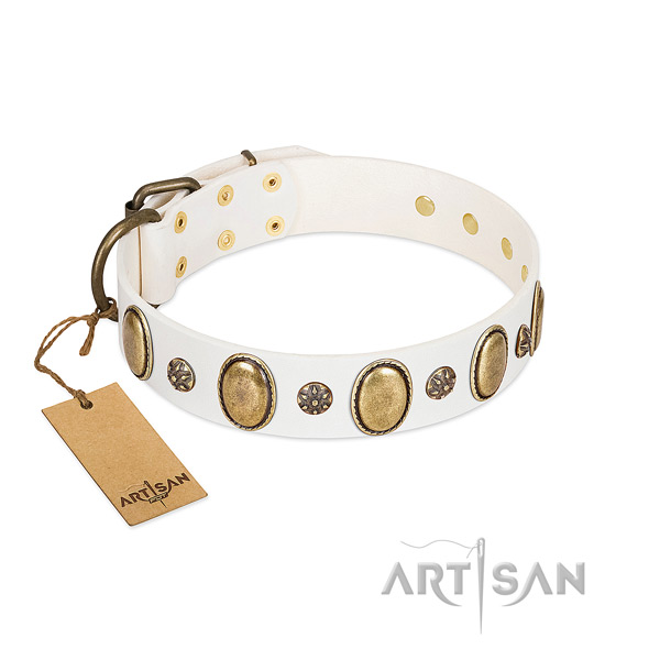 Comfy wearing top rate leather dog collar with studs