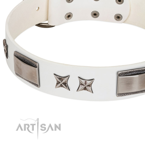 Quality full grain natural leather dog collar with reliable hardware