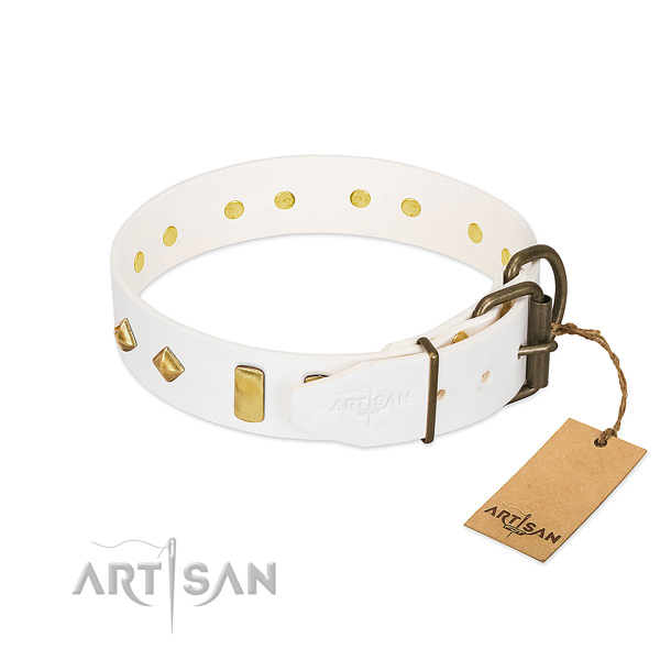 Reliable natural leather dog collar with reliable buckle