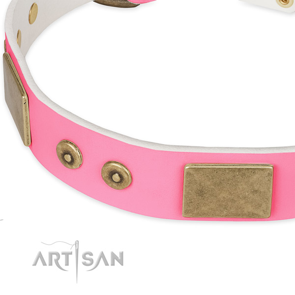Full grain leather dog collar with decorations for walking