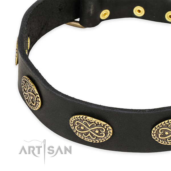 Awesome leather collar for your lovely pet