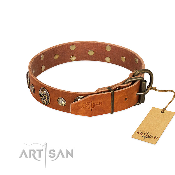Durable fittings on full grain genuine leather collar for fancy walking your canine