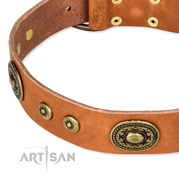 Full grain leather dog collar made of flexible material with decorations