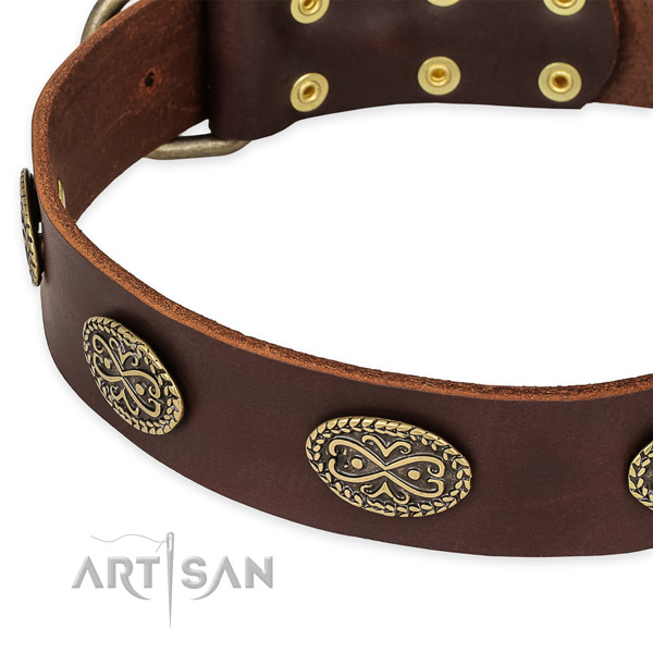 Handcrafted leather collar for your attractive pet