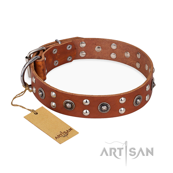Everyday use fine quality dog collar with durable traditional buckle