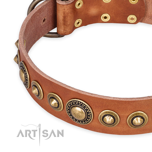 Top notch genuine leather dog collar handmade for your handsome dog