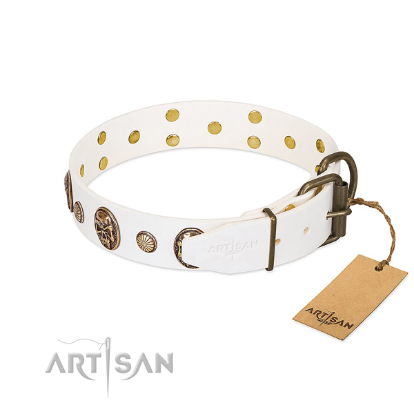 Rust-proof fittings on natural genuine leather collar for walking your dog