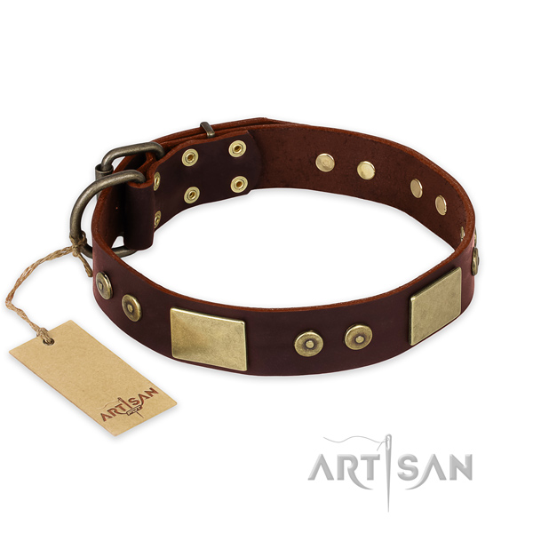 Stunning natural genuine leather dog collar for stylish walking