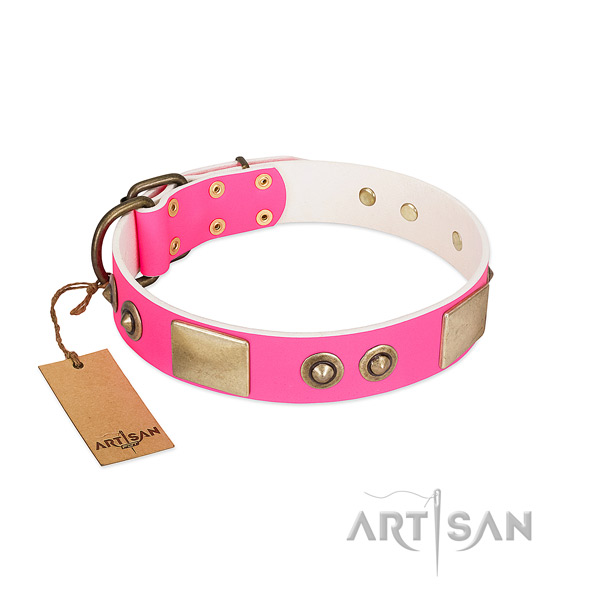 Rust-proof decorations on genuine leather dog collar for your canine