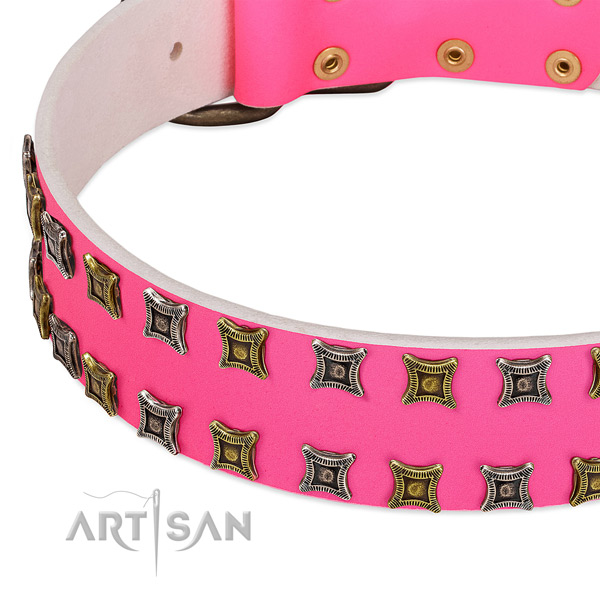Full grain leather dog collar with embellishments for your beautiful four-legged friend