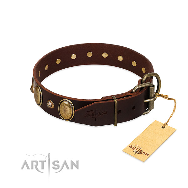 Rust resistant D-ring on genuine leather collar for everyday walking your canine