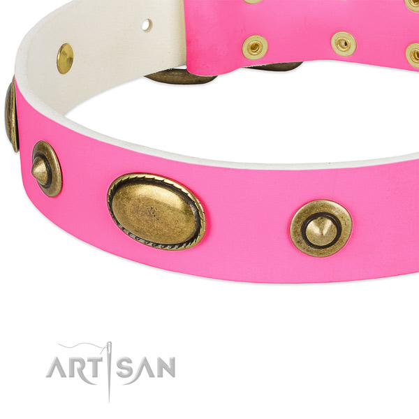 Rust resistant studs on genuine leather dog collar for your pet