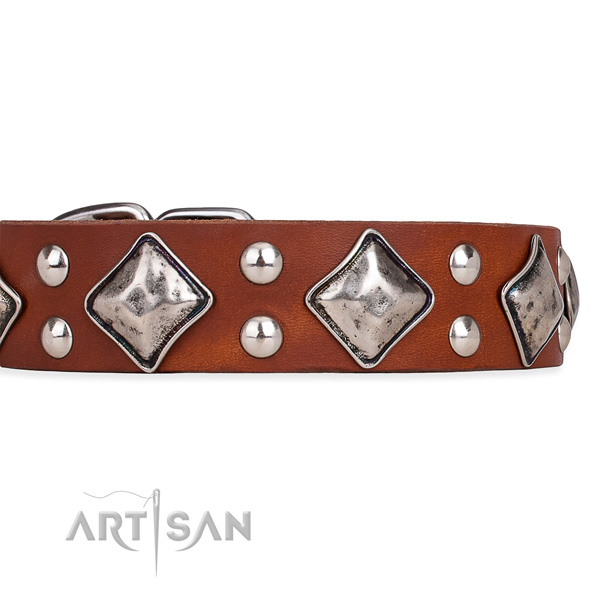 Full grain natural leather dog collar with extraordinary corrosion proof decorations