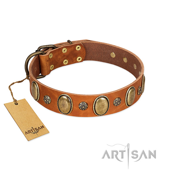 Stylish walking gentle to touch genuine leather dog collar with decorations