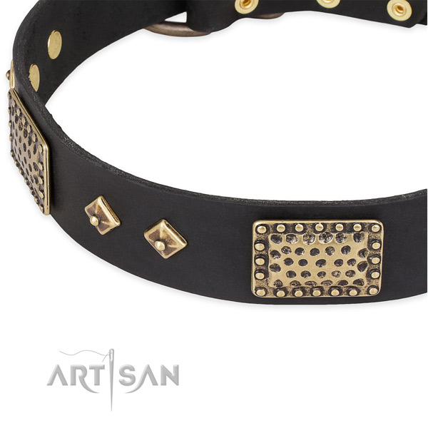 Rust resistant studs on full grain leather dog collar for your four-legged friend