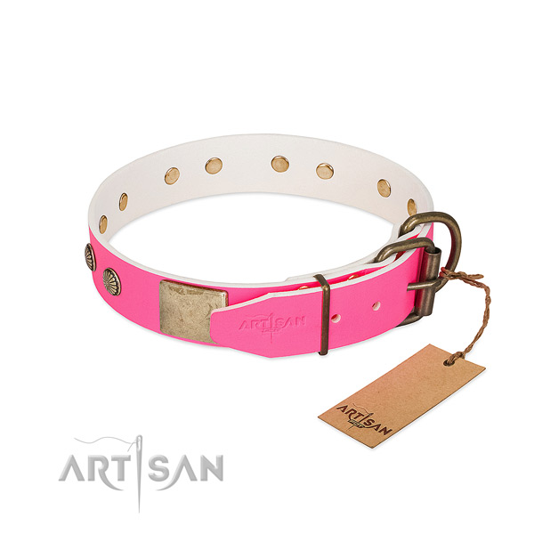 Durable decorations on easy wearing dog collar