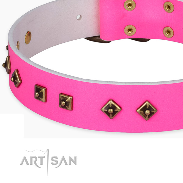 Trendy natural leather collar for your attractive dog