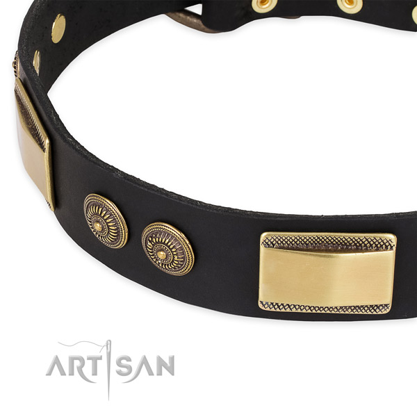 Studded genuine leather collar for your lovely dog