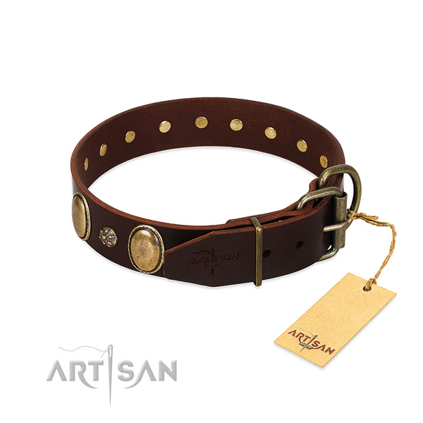 Everyday walking best quality full grain natural leather dog collar