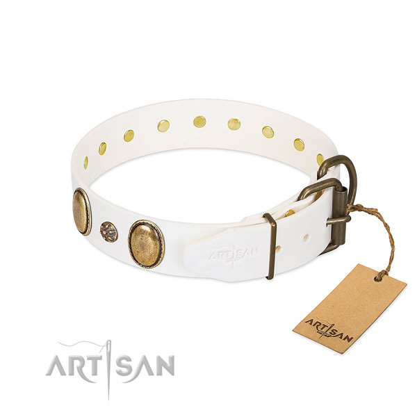Daily use high quality leather dog collar