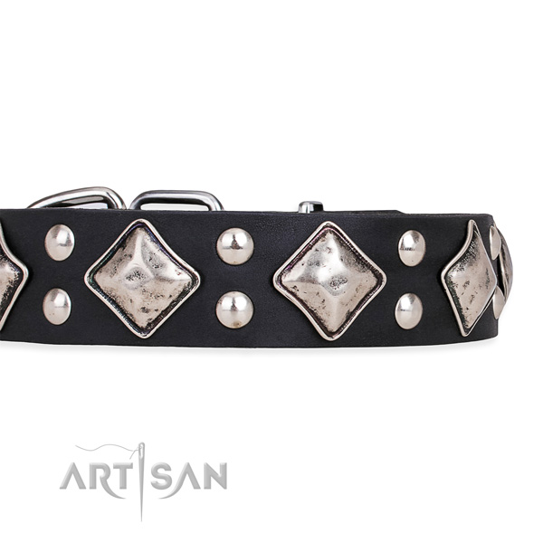 Leather dog collar with top notch durable decorations