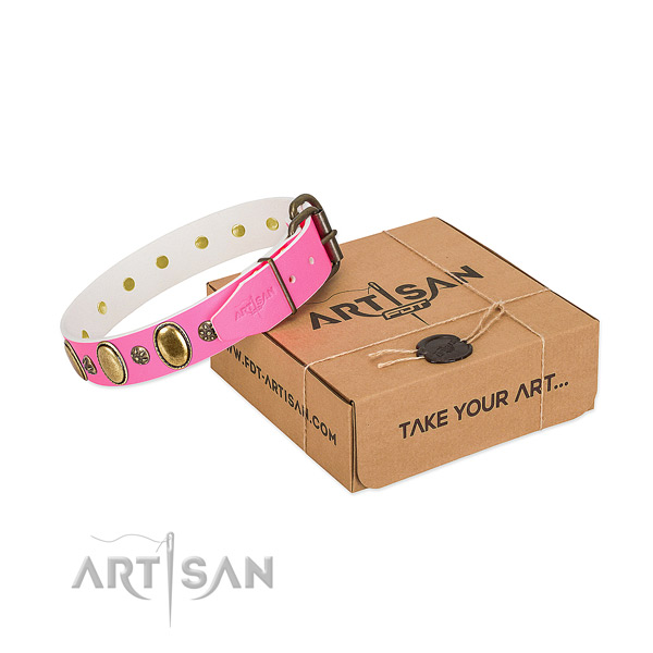 Everyday use top rate genuine leather dog collar with studs