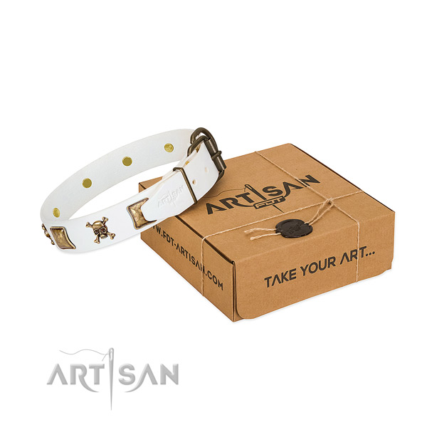 Top notch full grain leather dog collar with corrosion resistant adornments