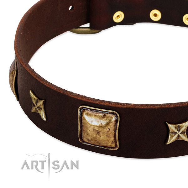 Reliable D-ring on full grain leather dog collar for your doggie