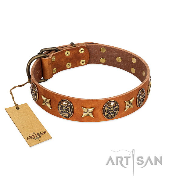 Unique leather collar for your dog
