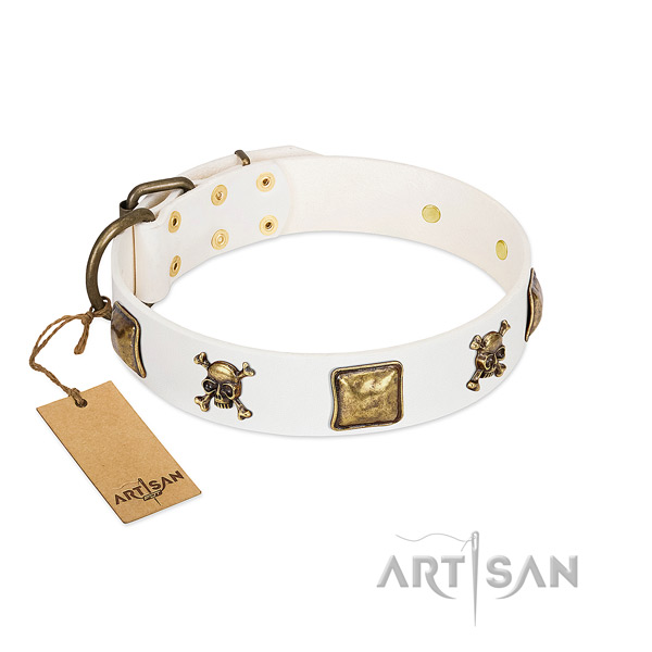 Trendy full grain leather dog collar with durable studs