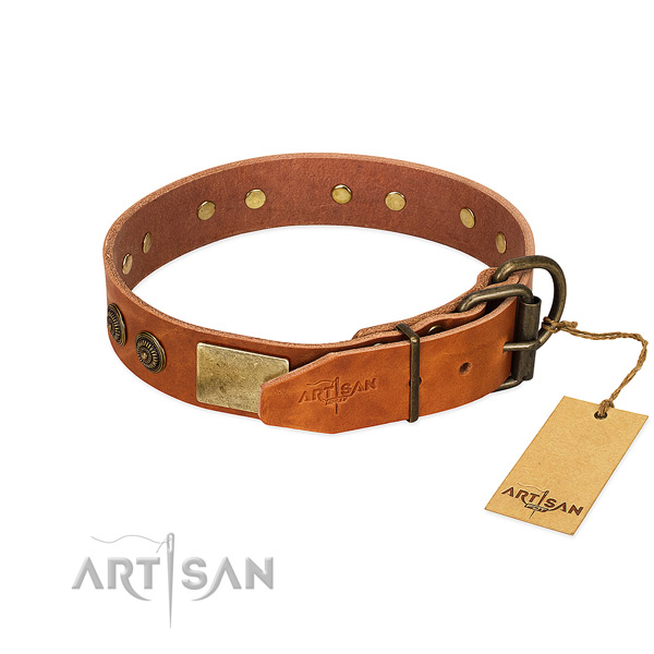 Rust-proof hardware on full grain leather collar for fancy walking your pet