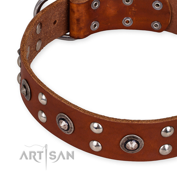 Full grain leather collar with reliable buckle for your lovely canine
