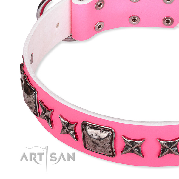 Fancy walking studded dog collar of fine quality full grain genuine leather