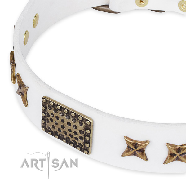 Natural genuine leather collar with corrosion resistant hardware for your stylish pet