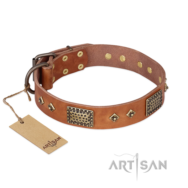Easy to adjust genuine leather dog collar for daily use