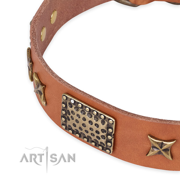 Natural genuine leather collar with strong traditional buckle for your beautiful four-legged friend