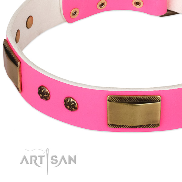 Corrosion resistant studs on genuine leather dog collar for your pet