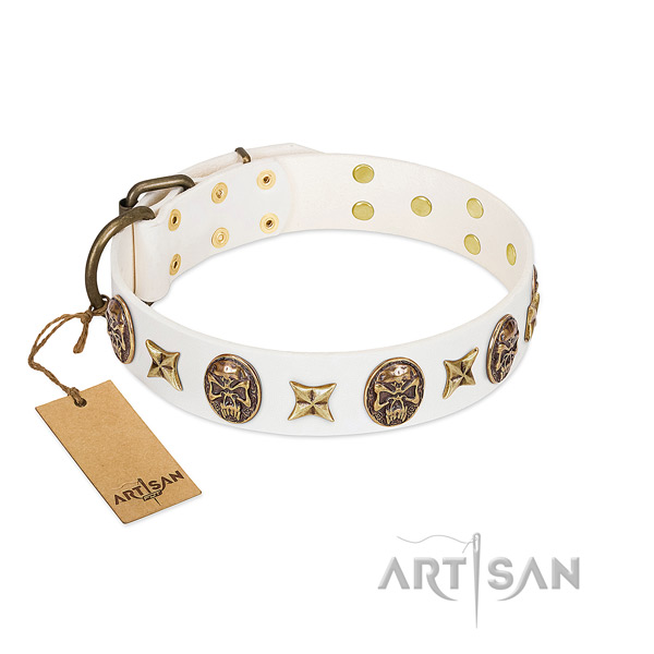 Decorated full grain genuine leather dog collar for basic training