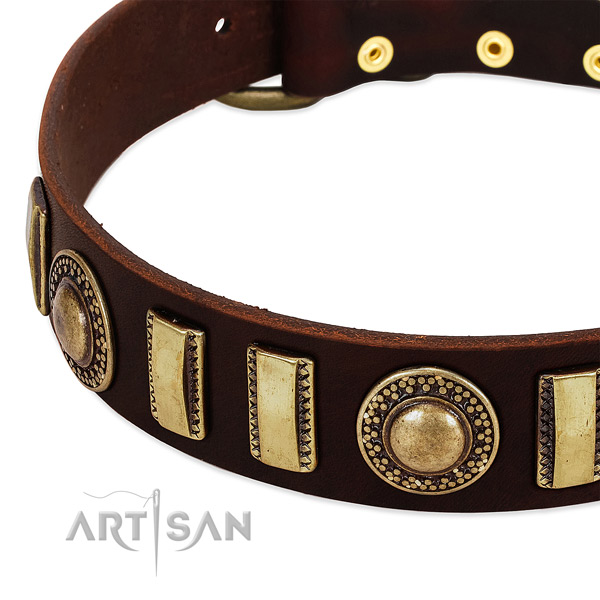 High quality full grain leather dog collar with durable traditional buckle